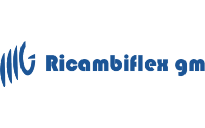 Display logo ricambiflex